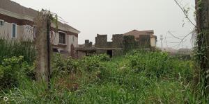 Residential Land Land for sale Off Adeyeye Millenuim/UPS Gbagada Lagos