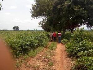 Mixed   Use Land Land for sale Opposite temboga junction Uteh community Ukpoba Edo