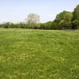 Residential Land for sale Royal Garden Estate Sangotedo Ajah Lagos