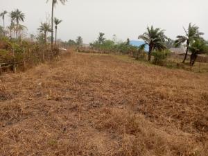 Residential Land Land for sale Akaeze  Ivo Ebonyi