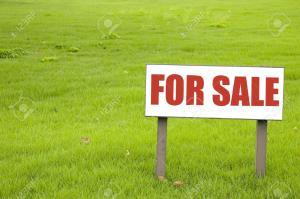 Land for sale Along Dangote ibese road itori Ewekoro Ogun