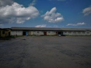Warehouse Commercial Property for rent Oshodi industrial area Oshodi Expressway Oshodi Lagos