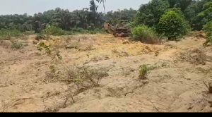 Mixed   Use Land Land for sale Anambra Anambra