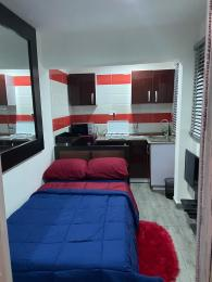 1 bedroom mini flat  Studio Apartment Flat / Apartment for shortlet FREEDOM WAY LEKKI PHASE 1 Lekki Phase 1 Lekki Lagos