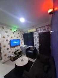 1 bedroom mini flat  Mini flat Flat / Apartment for shortlet Ogunlana Drive Ogunlana Surulere Lagos