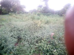Residential Land Land for sale Shimawa close to redeem camp Sagamu Sagamu Ogun