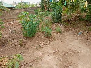 Mixed   Use Land Land for sale Shote road Magboro Obafemi Owode Ogun