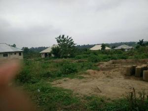 Land for sale Near Adekola Bus Stop, Egbeda, Ibadan Egbeda Oyo