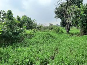 Mixed   Use Land for sale Ajah Badore Ajah Lagos