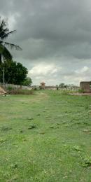 Mixed   Use Land Land for sale Ogba-Ayo area, Ijoko Ifo Ifo Ogun