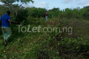 Commercial Land Land for rent Ikegun Ibeju-Lekki Lagos