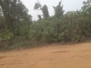 Land for sale Ikwere OMUANWA COMMUNITY PORTHARCOURT  Ikwerre Rivers