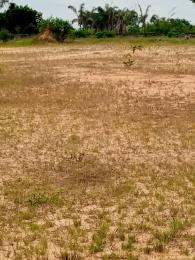 Land for sale Ohaji Umuapu Local Govt Imo State Ohaji/Egbema Imo