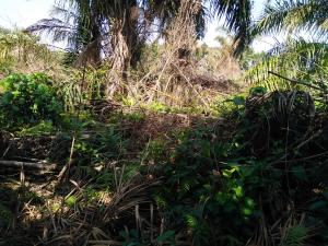 Mixed   Use Land Land for sale By Rain Oil Abijo Ajah Lagos