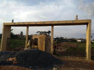 Serviced Residential Land Land for sale Behind Goshen Estate in premier layout,New Atisan  Enugu Enugu
