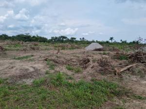 Industrial Land Land for sale Bolorunpelu  Eleranigbe Ibeju-Lekki Lagos