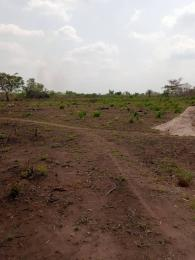 Residential Land Land for sale Onigbedu Elere Papalanto Ewekoro Ogun