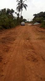 Land for sale 1min Drive from Lacampagne Tropicana  Ise town Ibeju-Lekki Lagos