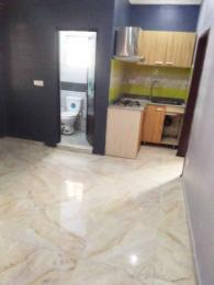 2 bedroom Flat / Apartment for rent off freedom way Lekki ...