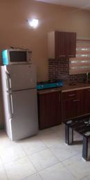 Mini flat Flat / Apartment for shortlet Off freedom way Lekki Phase 1 Lekki Lagos