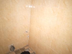 1 bedroom mini flat  Mini flat Flat / Apartment for rent Jide TIawo Street Ojodu Lagos