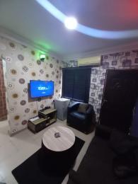 1 bedroom Mini flat for shortlet Ogunlana Surulere Lagos