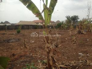Mixed   Use Land Land for sale Close To Protia Hotel New Owerri, Owerri Imo
