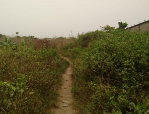 Mixed   Use Land Land for sale idimu Egbe Ikotun/Igando Lagos