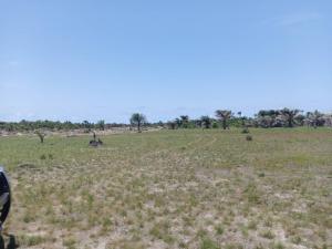 Mixed   Use Land Land for sale ODE-OMI,  Ibeju-Lekki Lagos
