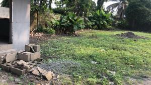 Mixed   Use Land for sale Apapa Lagos