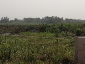 Mixed   Use Land Land for sale off Azagba Ogwashi-Ukwu Polytechnic Road Aniocha South Delta