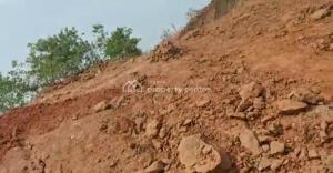 Mixed   Use Land Land for sale   Ikpoba Okha, Central Edo