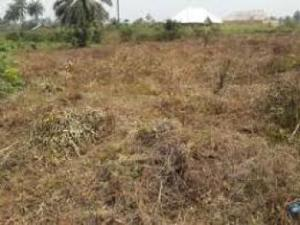 Mixed   Use Land Land for sale Etuk Usan Calabar Cross River