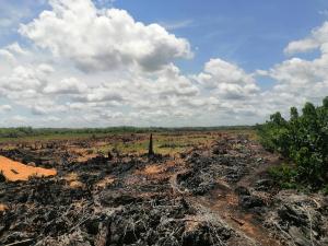 Mixed   Use Land Land for sale Off Lekki-Epe Expressway Ajah Lagos