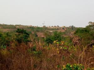 Mixed   Use Land Land for sale Adeyemo village near Idi ahun, Quarry area off liberty Academy road Akala Express Ibadan Oyo
