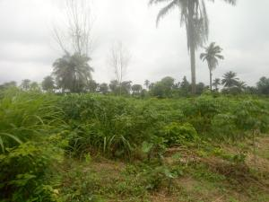 Mixed   Use Land Land for sale olorisa Oko village, near Isheyin road, Moniya Moniya Ibadan Oyo