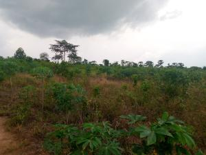 Mixed   Use Land for sale Adeaga Village, Bakantari Ilugun Area Off Ibadan Abeokuta Expressway Apata Ibadan Oyo