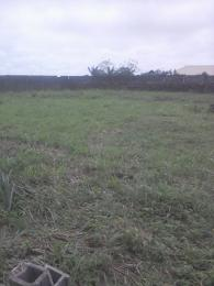 Mixed   Use Land Land for sale Diamond estate aradagun badagry  by n.t.a sikiru bus stop aradagun  Badagry Badagry Lagos