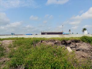 Commercial Land Land for sale Free trade zone Free Trade Zone Ibeju-Lekki Lagos