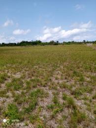 Mixed   Use Land for sale Oakwood Estate LaCampaigne Tropicana Ibeju-Lekki Lagos