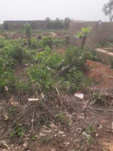 Land for sale ANAEYIN SHELTER AFRIQUE EXTENSION ETTE IBESIKPO LGA  Uyo Akwa Ibom