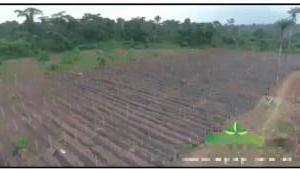 Industrial Land Land for sale West Agro Farms Ode Remo Remo North Ogun