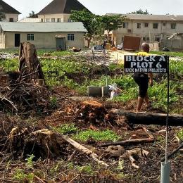Mixed   Use Land for sale Iyanaschool,5mins Drive To Lasu Iba Ojo Lagos
