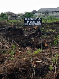 Commercial Land Land for sale Iyana-Isashi, off iyanaschool,5 mins drive from Lagos state University Ojo Ojo Lagos