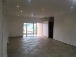 3 bedroom Flat / Apartment for rent SECOND AVENUE Old Ikoyi Ikoyi Lagos