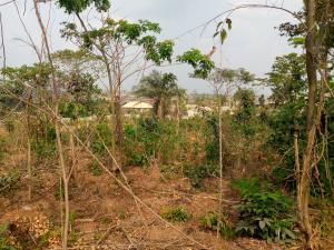 Residential Land Land for sale balogun Olorombo, near Olonde area off Ologuneru-Ido road, Ologuneru Ibadan Oyo