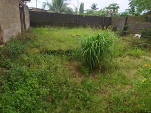 Mixed   Use Land Land for sale command ipaja Ipaja Lagos