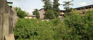 Residential Land for sale Off Adeniran Ogunsanya Surulere Adeniran Ogunsanya Surulere Lagos