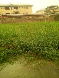 Residential Land Land for sale Amuwo Odofin  Amuwo Odofin Amuwo Odofin Lagos