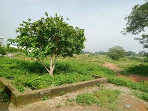 Joint   Venture Land Land for sale Behind inec quarters Guzape Abuja